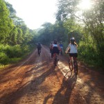 bike into the forest along the jaguar road