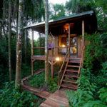 Rainforest experience Chacra del Agua